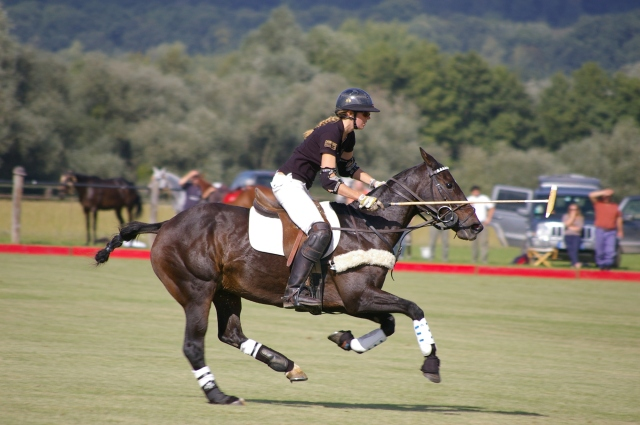 Polo lessons in Hampshire